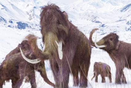 A Mammoth Task Still Lies Ahead